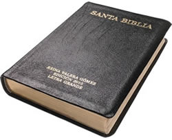 RVG - Large Print Edition (Leather)